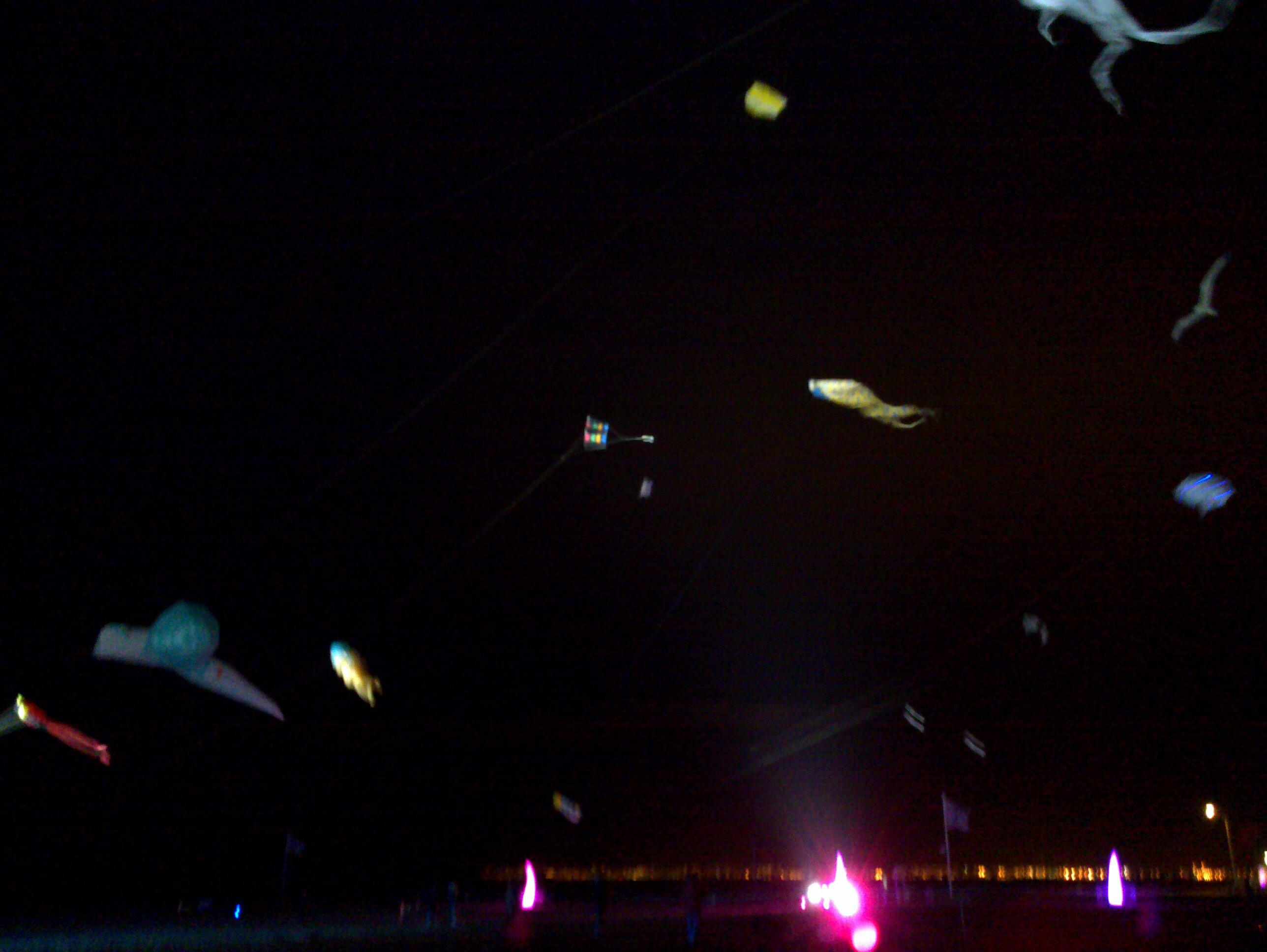 8e Festival du cerf-volant de Trouville 2013